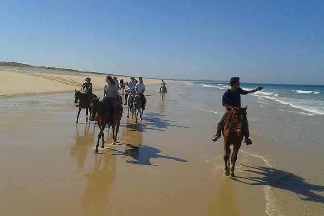 Horse Riding Tour on the Beach Lisbon region photo 12