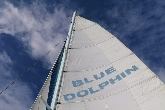 Blue Dolphin Sailing Private Tour - Tamarindo photo 8