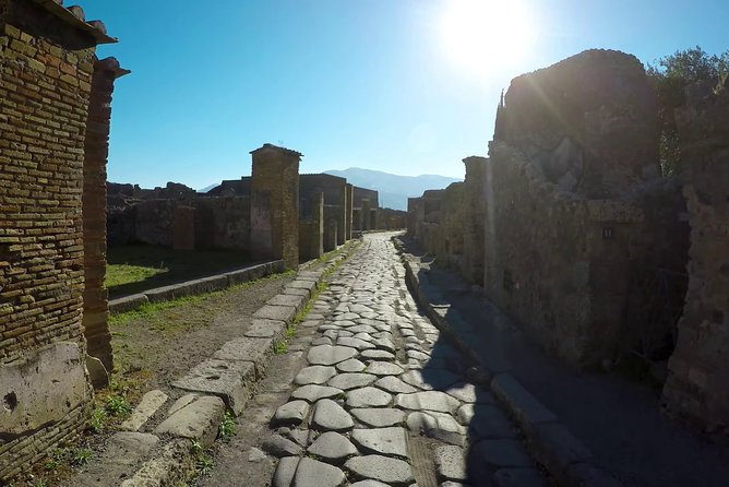 Private Pompeii and Local Wine Tasting from Naples ALL INCLUSIVE photo 16