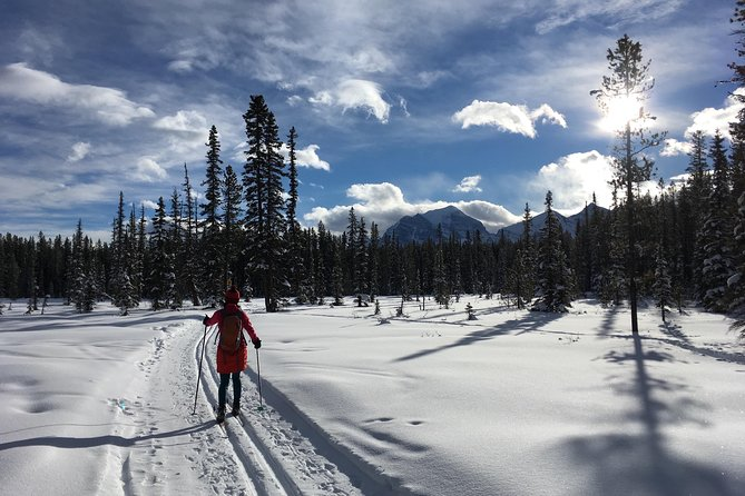 Learn to Cross Country Ski in Lake Louise