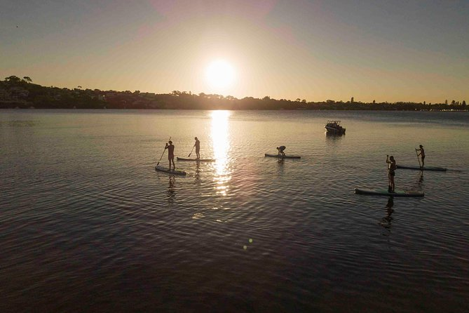 Stand up paddle board hire photo 7