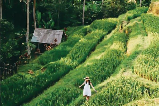 Traditional and Relaxing Ubud Tour Package photo 2