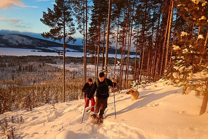 Snowshoe Hike into Lapland's White Wilderness