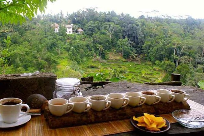 Private Tour: Jatiluwih Rice Terrace,Ulun danu and Banyu Mala Waterfall Tour