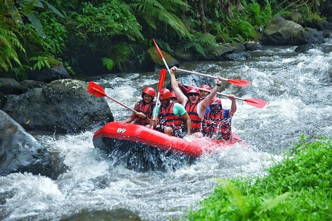 Private Tour: White water rafting, Monkey Forest Ubud and Lunch