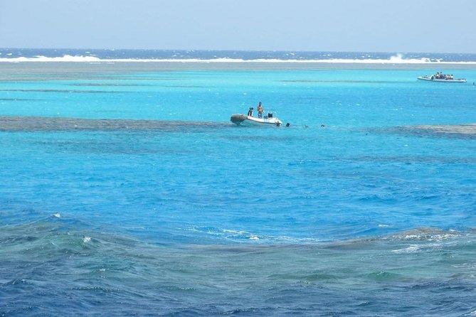 Abu Dabbab Beach Full Day From Hurghada