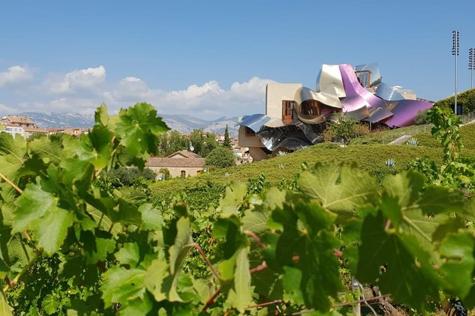 La Rioja wine tour with two winery visits with tastings from Bilbao,