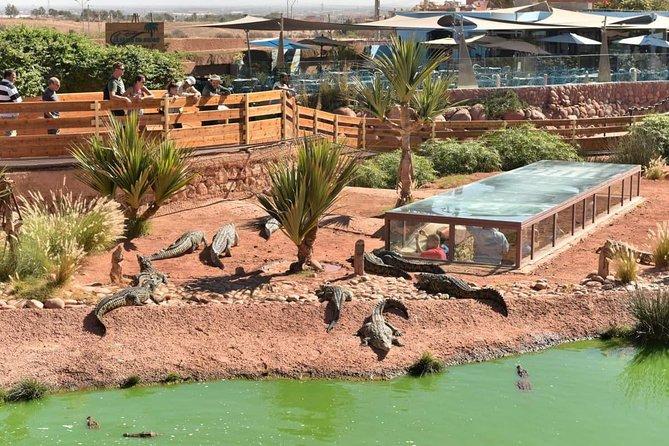 Agadir Crocoparc with transfer