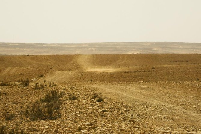 PROMO: Circuit 8 days and 7 nights south of Tunisia to discover the 3 deserts