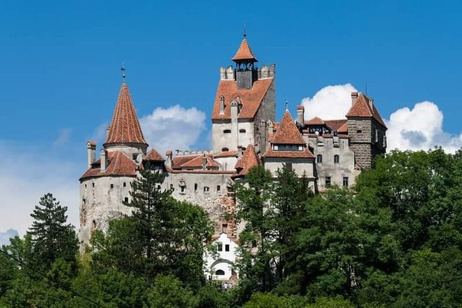 Meeting the Carpathian brown bears and visiting Dracula's Castle in 1 Day photo 8