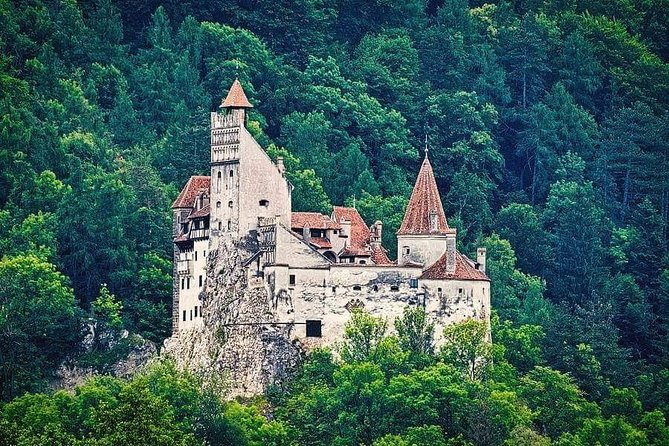 Meeting the Carpathian brown bears and visiting Dracula's Castle in 1 Day photo 10