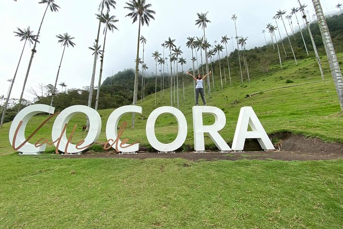 Cocora Valley horse tour