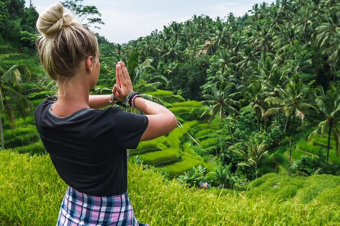 Bali Full Day Tour: Highlights of Ubud and Hidden Waterfall