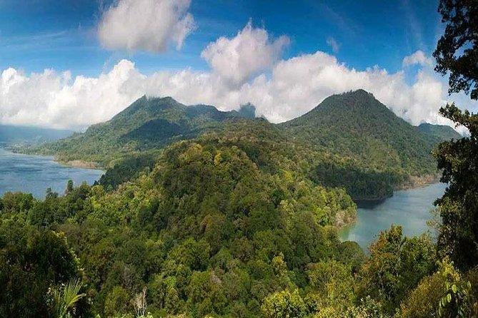 Bali Dolpin Tour