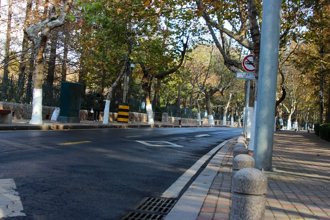 One of the roads winding through Zhongshan Park, with the park itself on both sides of the road