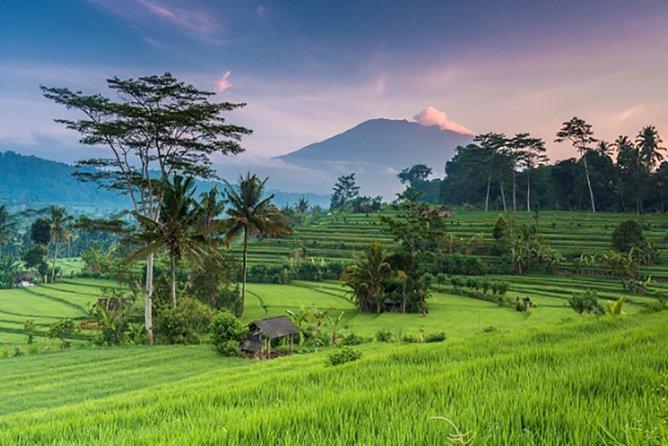 5 Days 4 Nights Bali & Nusa Penida Tour Package