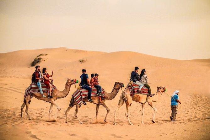 Morning Desert Safari Dubai with Exclusive Camel Ride