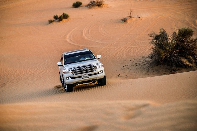 VIP Evening Desert Safari, Camel Ride, Dune Bashing, Sand Boarding, Exclusive