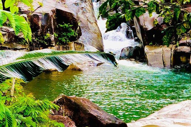 Rainforest and River Tour Plus Luquillo Beach