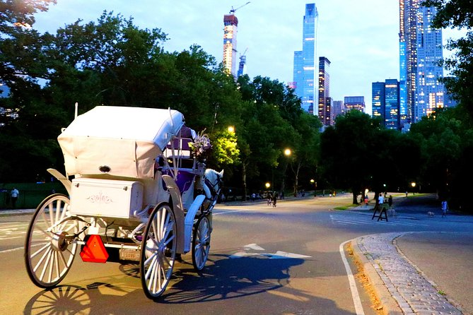 Central Park, Rockefeller & Times Square Horse Carriage Ride photo 14