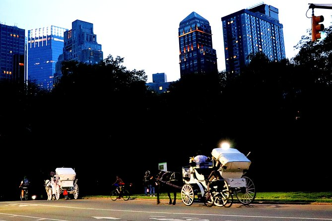 Central Park, Rockefeller & Times Square Horse Carriage Ride photo 8