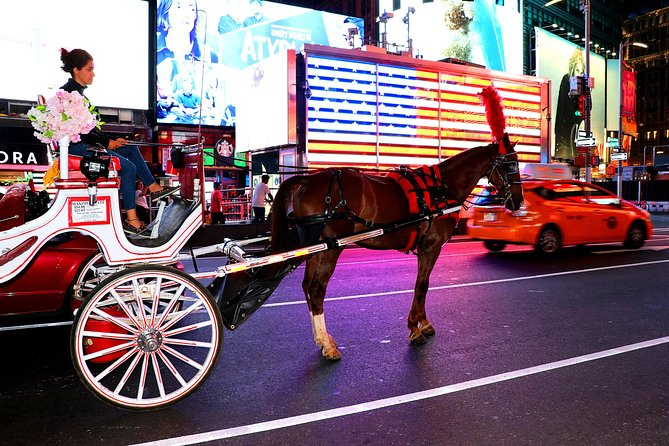 Central Park, Rockefeller & Times Square Horse Carriage Ride photo 6