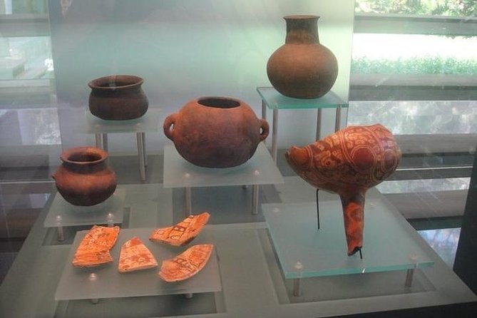 Shore Family Fun Ancient Archaeological Park Experience
