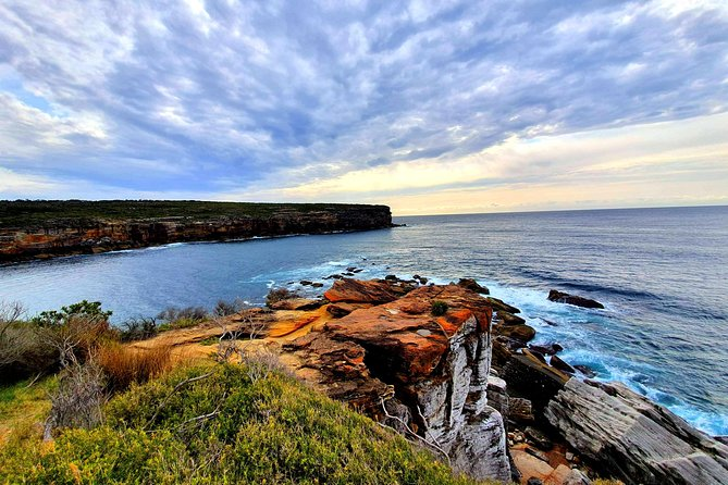 Premium Sydney Coastal Trek with Gourmet Picnic Lunch on the Beach