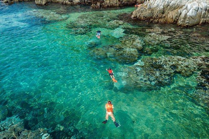 Shore Excursion Speedy Snorkel Experience