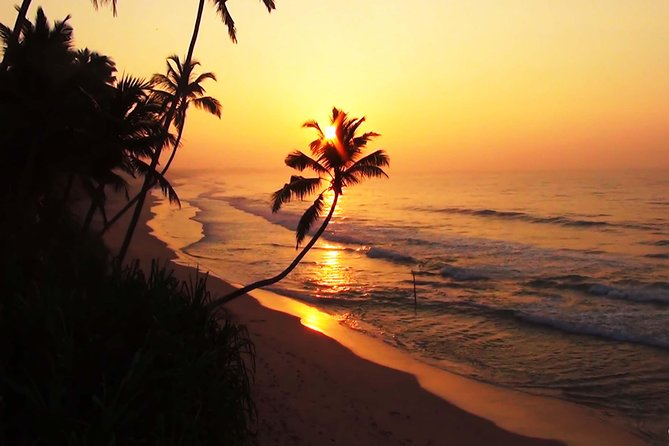 Christmas and New Year Holiday In Sri Lanka