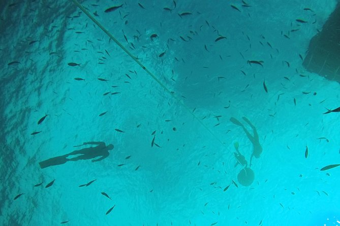 Breath-Hold Diving Initiation (FreeDiving) photo 2