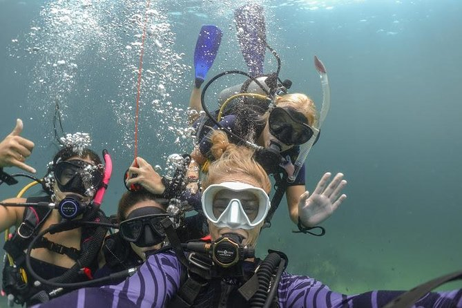 Discover Scuba Diving (DSD) 1 day Experience