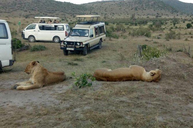 Amazing Maasai Mara 3 Days Safari