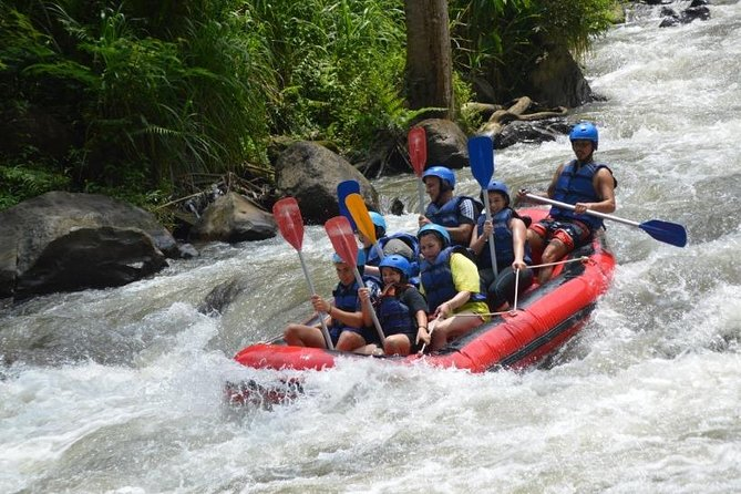 bali swing + white water rafting package,all inclusive,private tour guide