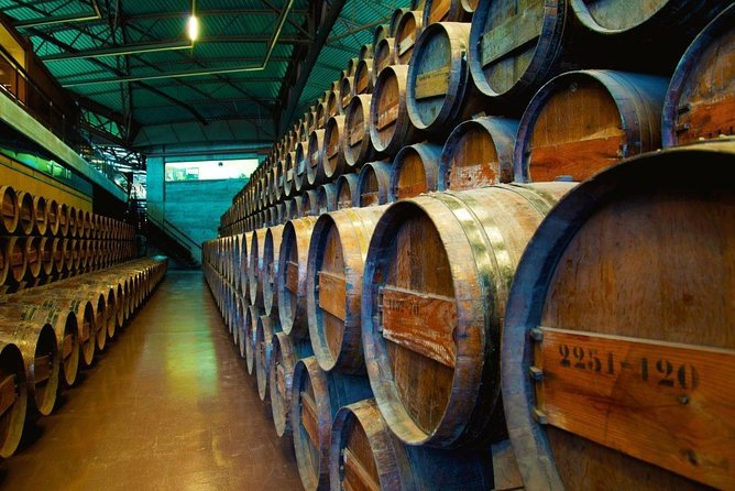 Arrabida & Wine Experience