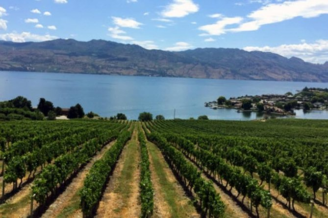 Kelowna Wine Tasting Experience with Picnic Lunch