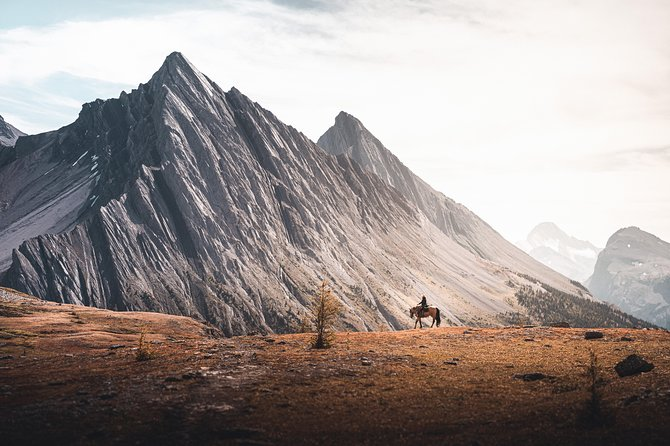 6-Day Halfway Lodge Backcountry Trip by Horseback