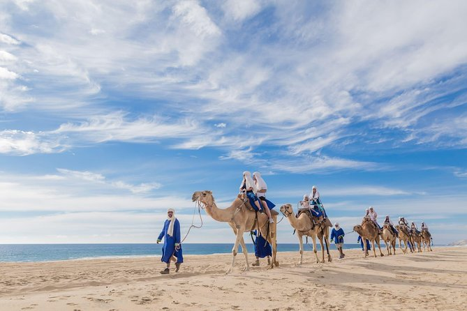 Desert & sea, Camel Safari tour in Los Cabos with lunch