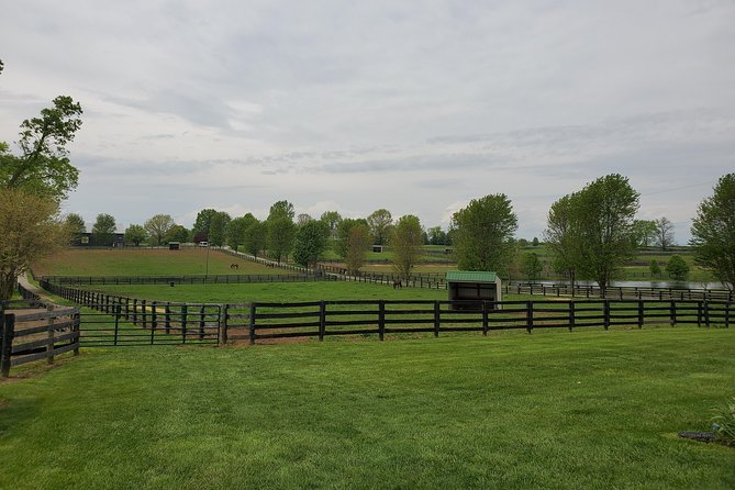KBT Horse Farm + Buffalo Trace Distillery photo 6