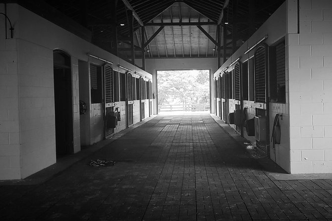 KBT Horse Farm + Buffalo Trace Distillery photo 7