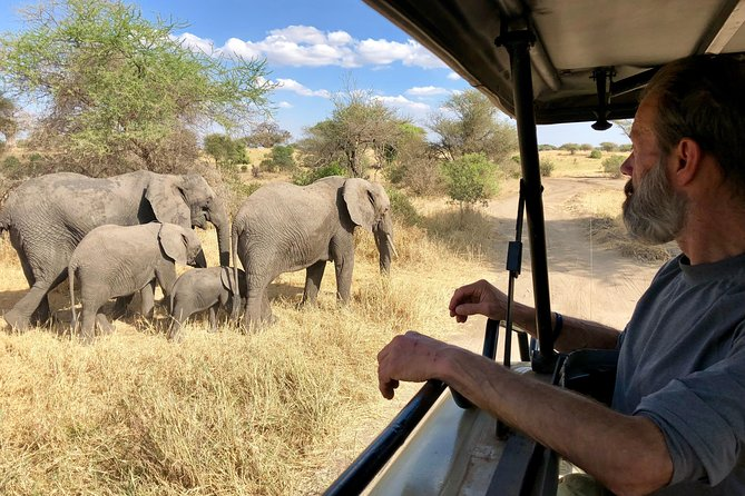 Kilimanjaro: Lemosho Route and Camping Safari