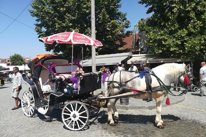 Daily tour Grachanica - Prishtina - Prizren