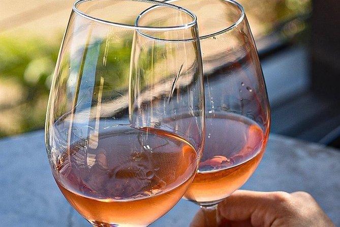 Valle de Guadalupe Wine tasting
