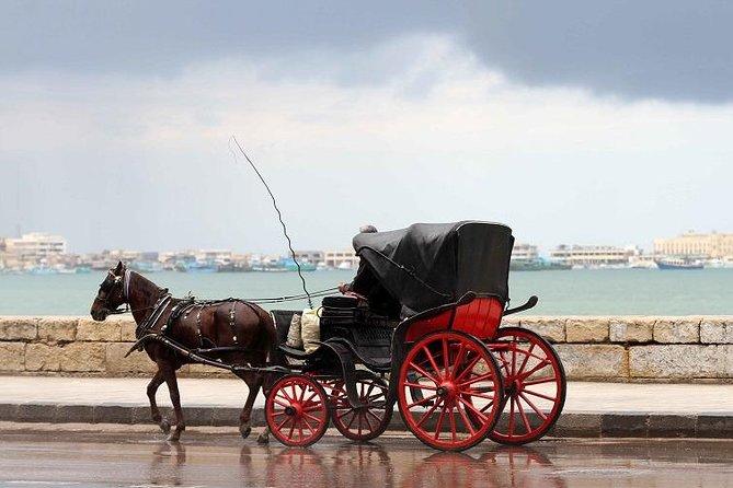 Alexandria Horse Carriage Tour