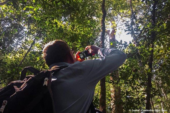 2-Day Cambodian Gibbon Spotting Tour