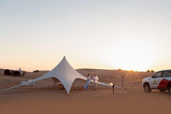 Private Starlight Safari