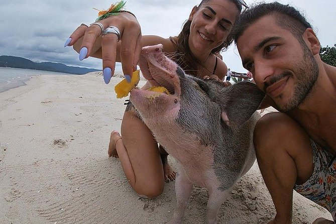 Pig Island Koh Samui by Speedboat with Sunset (Exclusive Pig Feeding Experience) photo 18
