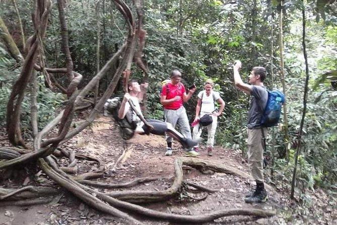 Trekking Gunung National Park