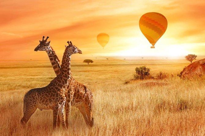 3 Days Mara Escape