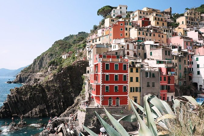 All Five Cinque Terre Villages & 2hrs Hiking Adventure: Day Trip from Florence photo 4